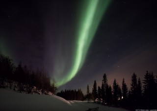 Northern Lights, Malangen, Norway 20170228 7.54pm