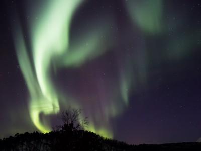 Northern Lights, Malangen, Norway 20170228 9.32pm