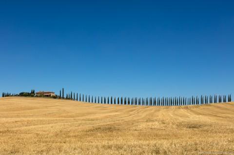 Villa with Cypress Alley, Bagno Vignoni, Italy