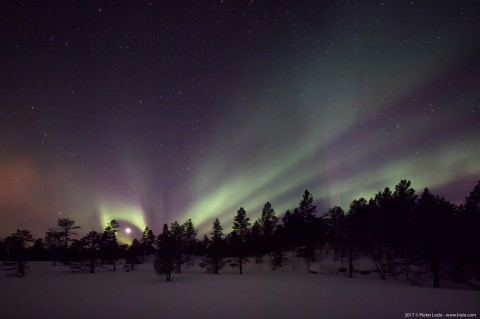 Northern Lights, Malangen, Norway 20170228 8.35pm